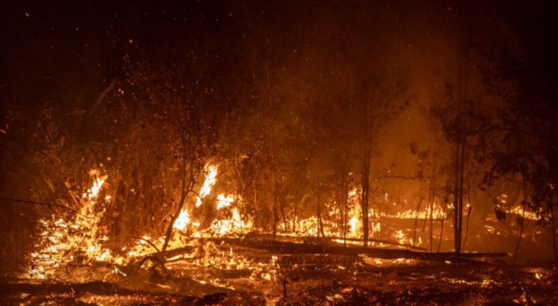 Вчера в страната бяха потушени над 400 пожара